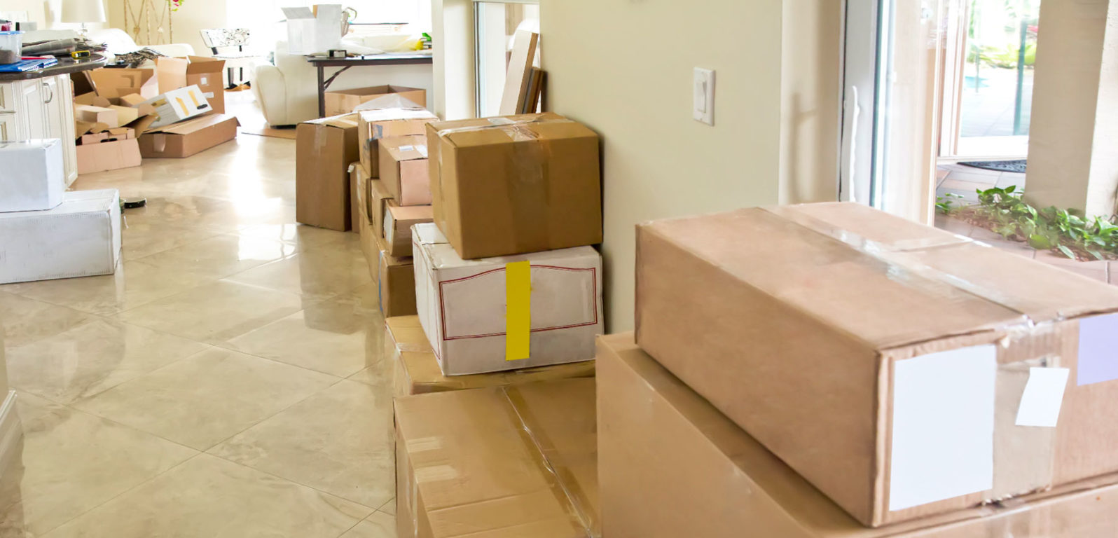 finding cheap movers